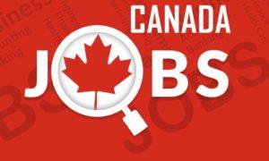 Top 20 Recruitment Agencies in Canada   Job Consultancy 2021